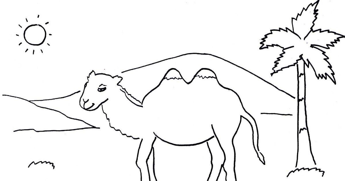 Gambar Binatang Animasi Hitam Putih Gambar Mewarnai Unta Gambar Unta Warna Download 92 Gambar Hewan Hitam Putih Untuk Kolase T Animasi Binatang Anak Binatang