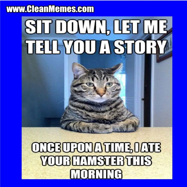 Pin by Clean Memes on Clean Memes Cat quotes funny