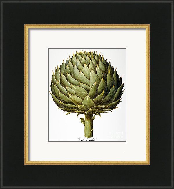 Print Fine Art Picture Poster Print Art Print Artichoke Pastel I