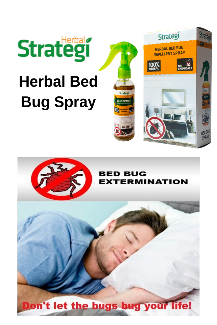 Pin on Bed Bug Spray