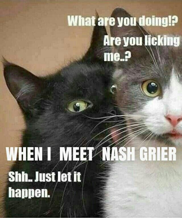 I made Nash a meme :D