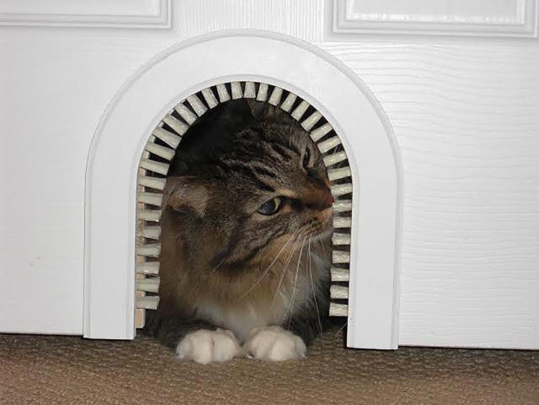 Cat & Cat Door - Cathole Interior Pet Door With Cleaning Brush * Check ... pezcame.com