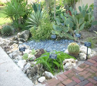 Pictures Gallery Of Small Garden Ideas Photos Landscaping For A Small Space  Landscaping Ideas Landscaping Small Garden Demands Pla.