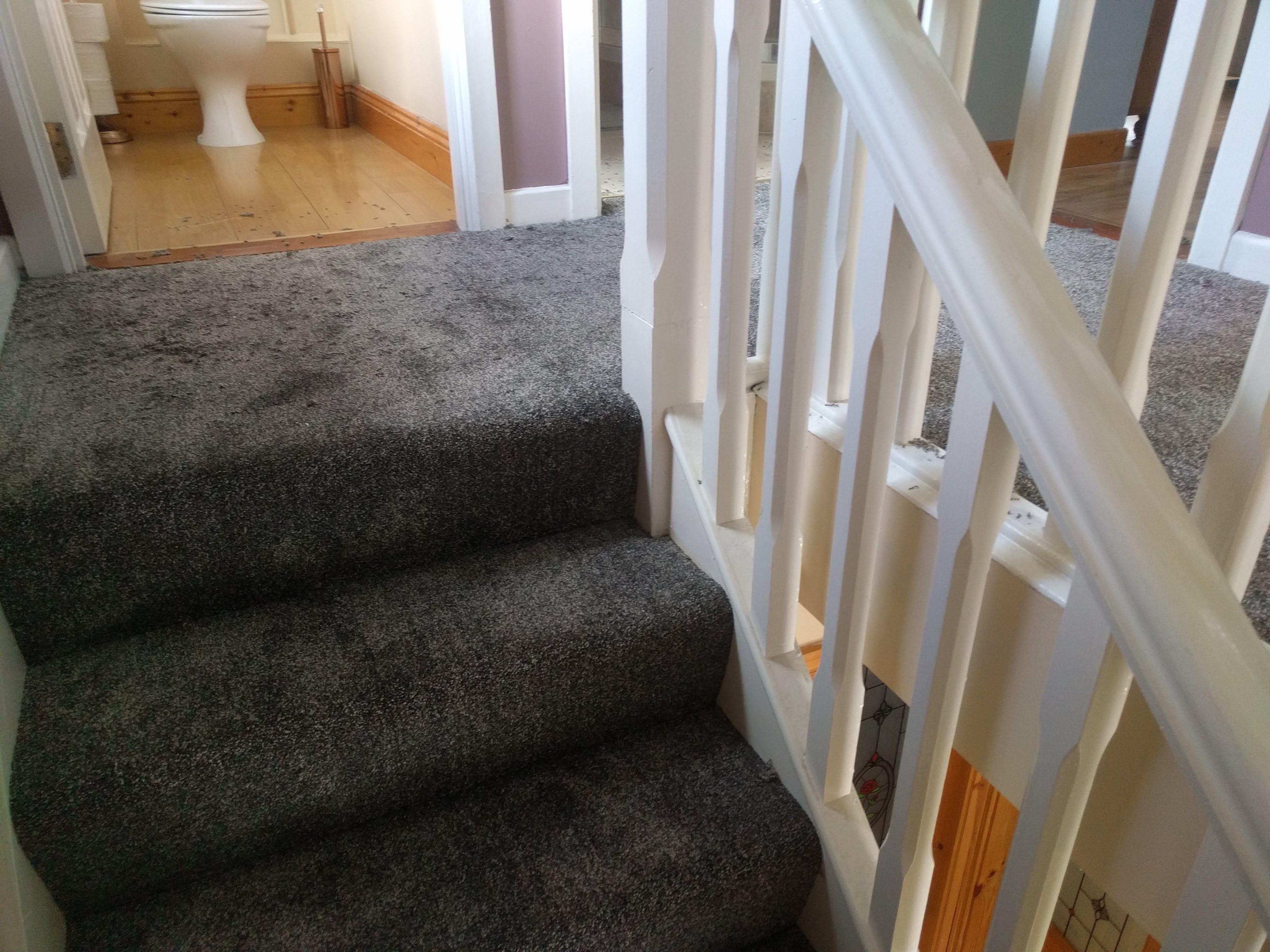 Stairs And Landing Fitted In Dark Grey Carpet Dark Grey Carpet   Dark Grey Carpet Stairs   Fitted   Black   Grey Vinyl Flooring   Dark Brown   Floor