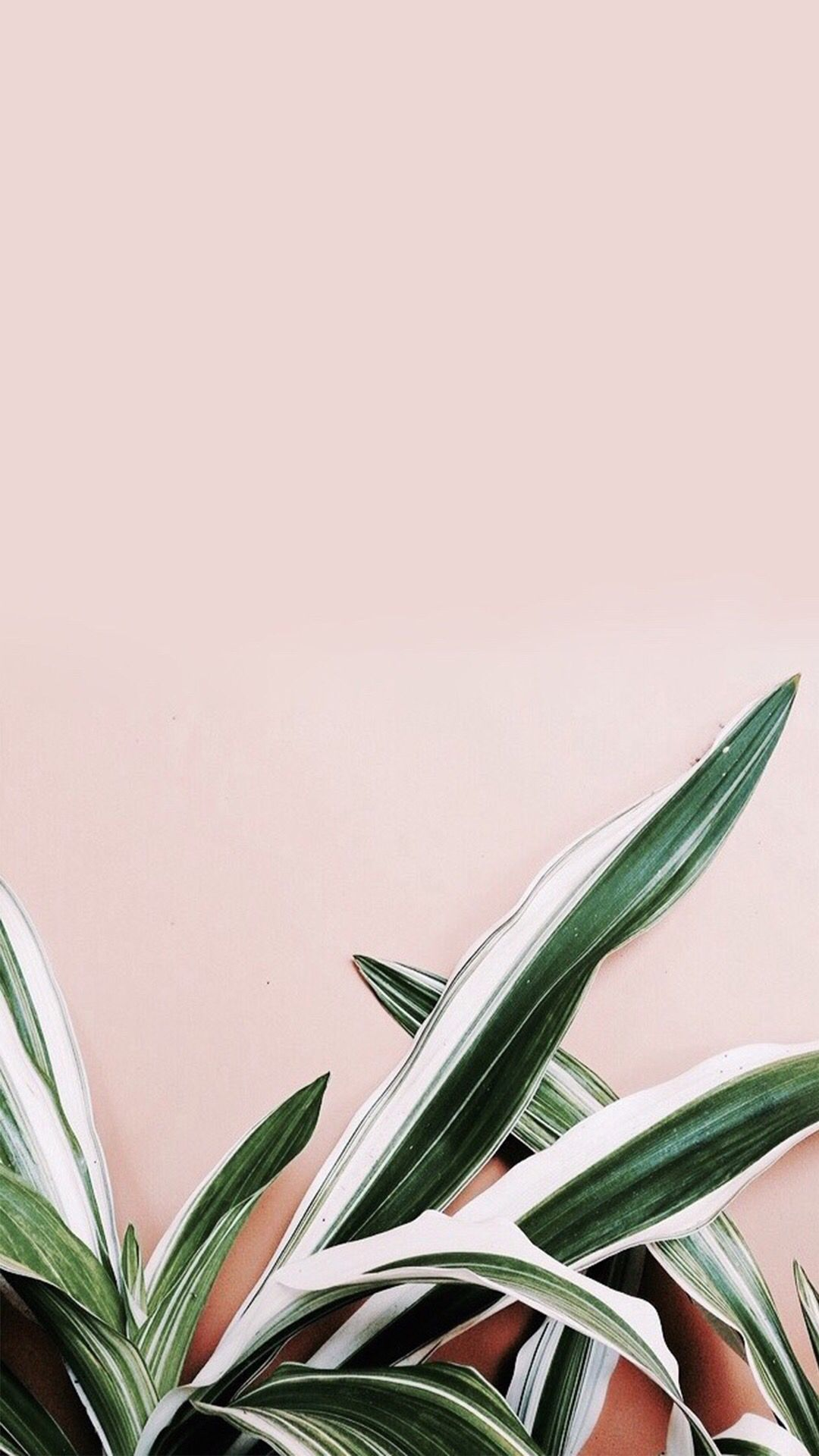 iPhone Wallpapers HD from Uploaded by user