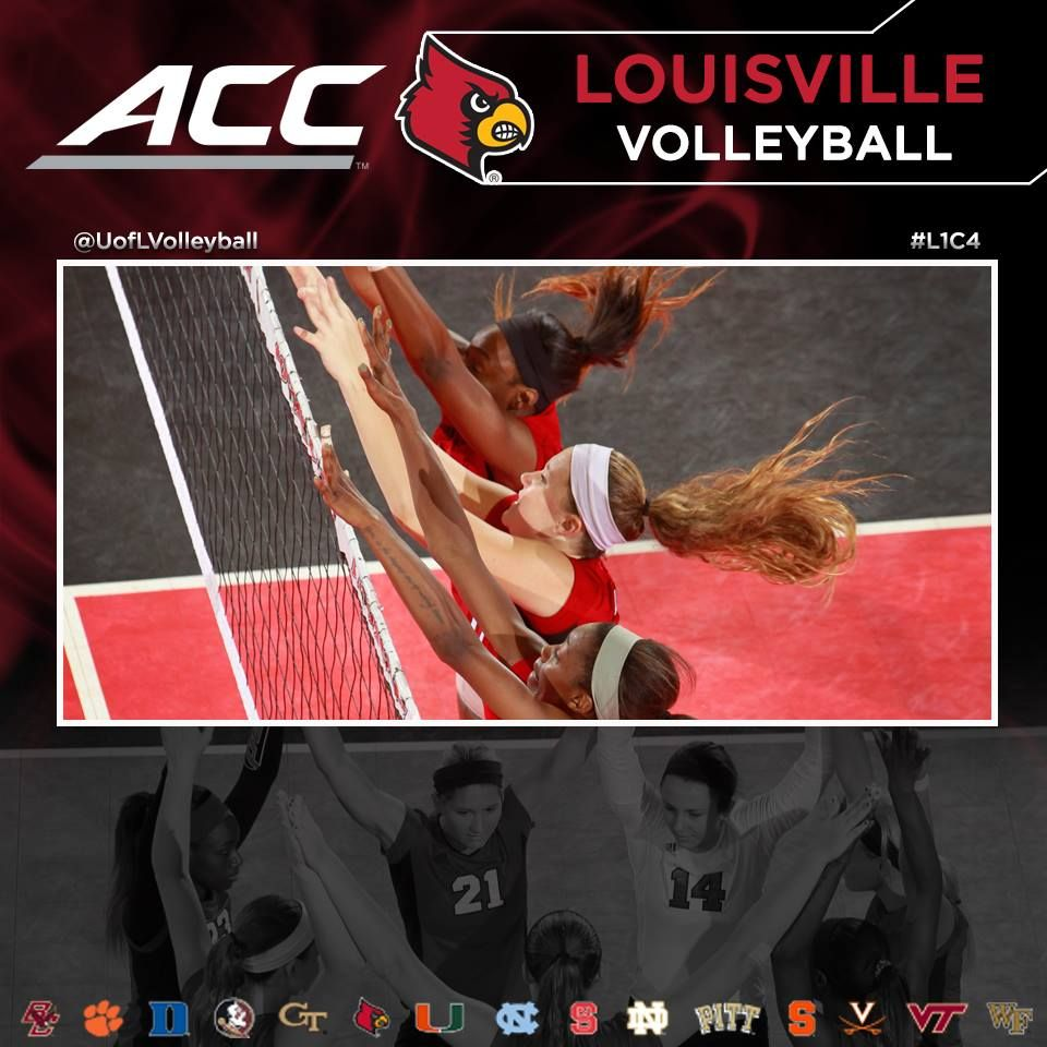 Timeline Photos Louisville Cardinals Facebook Louisville Louisville Cardinals Volleyball