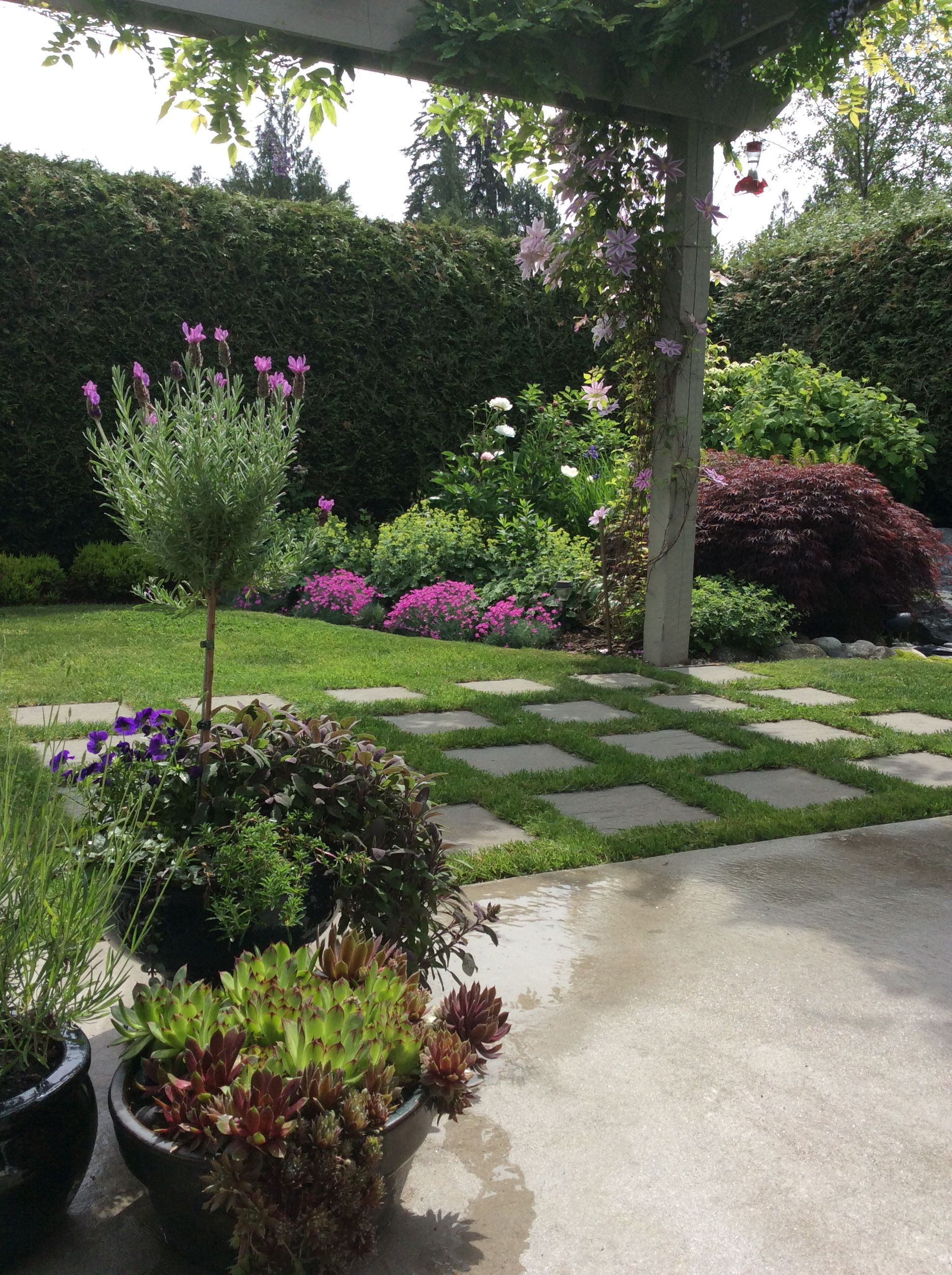 Marvelous Small Garden With Cement Pavers