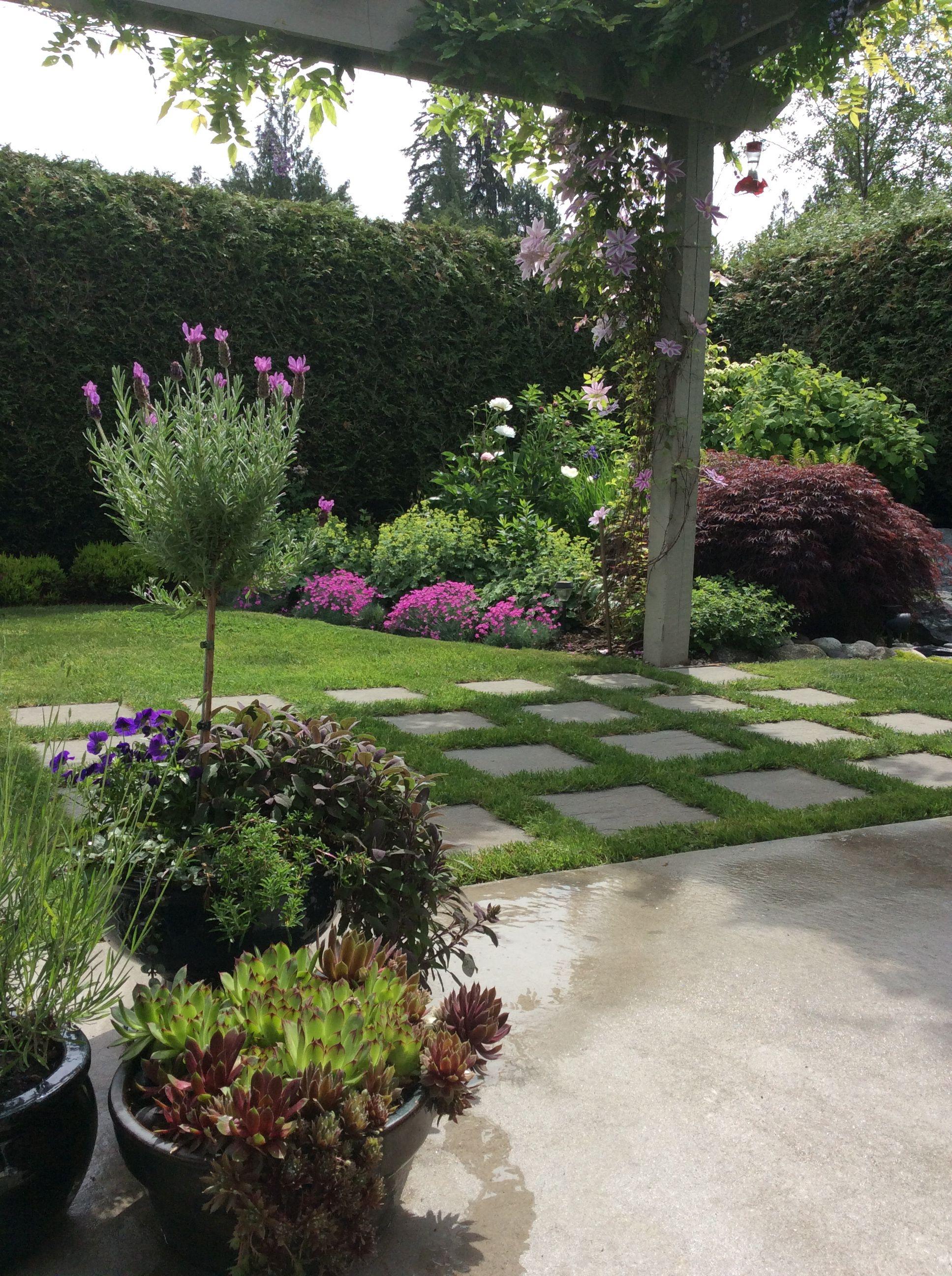 Small garden with cement pavers | Garden pavers, Garden ...
