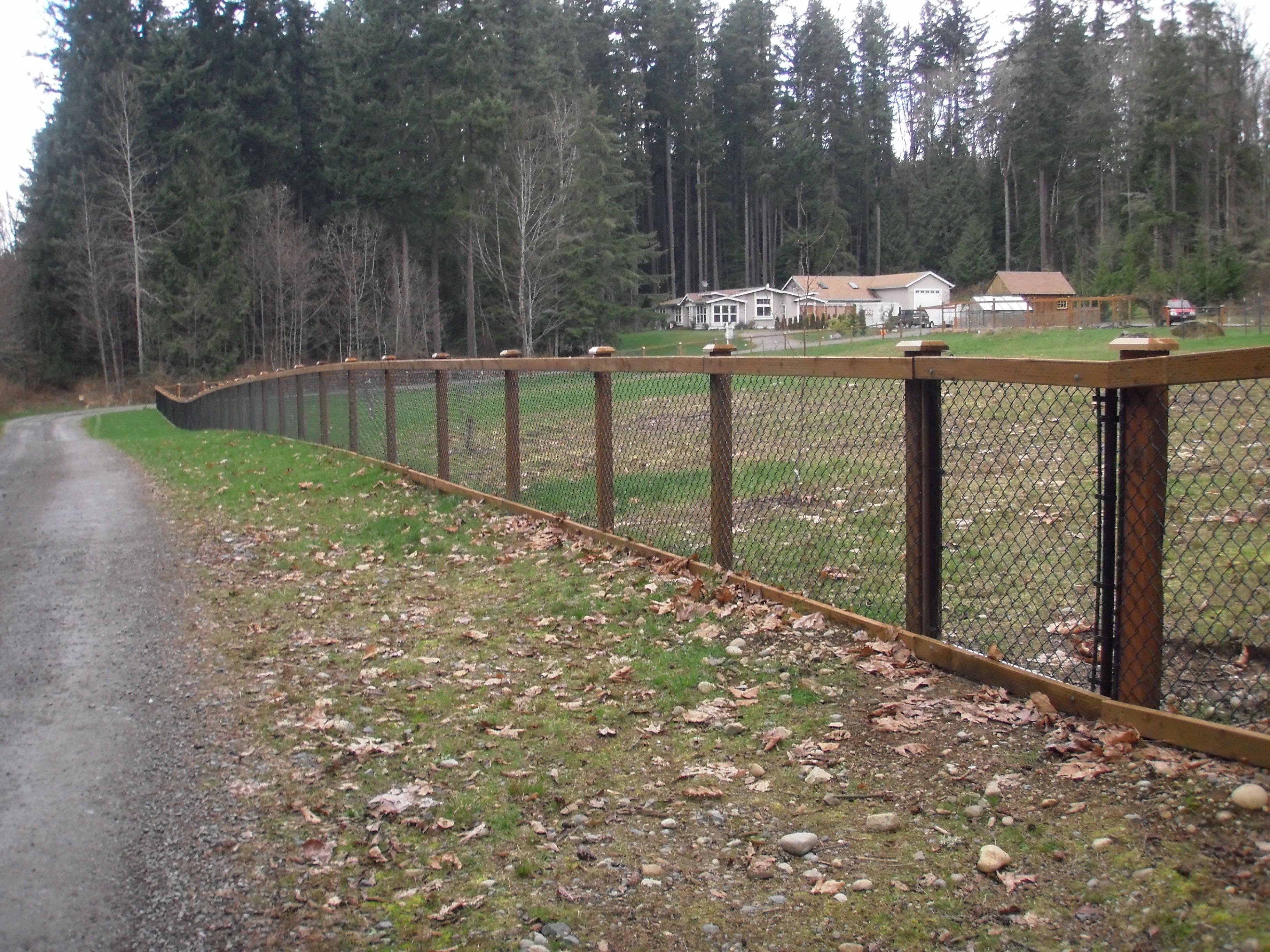 chain link fence with cedar wood trim house pinterest