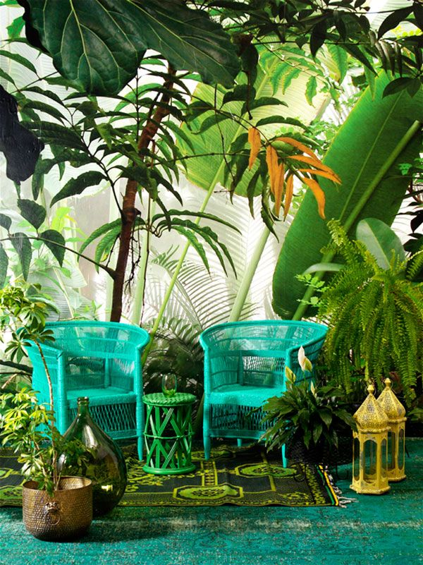 Tropical Jungle Style Home South Africa Magazine2 Plant