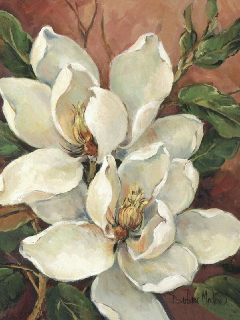 Magnolia Flower Drawing Flower Painting Flower Art