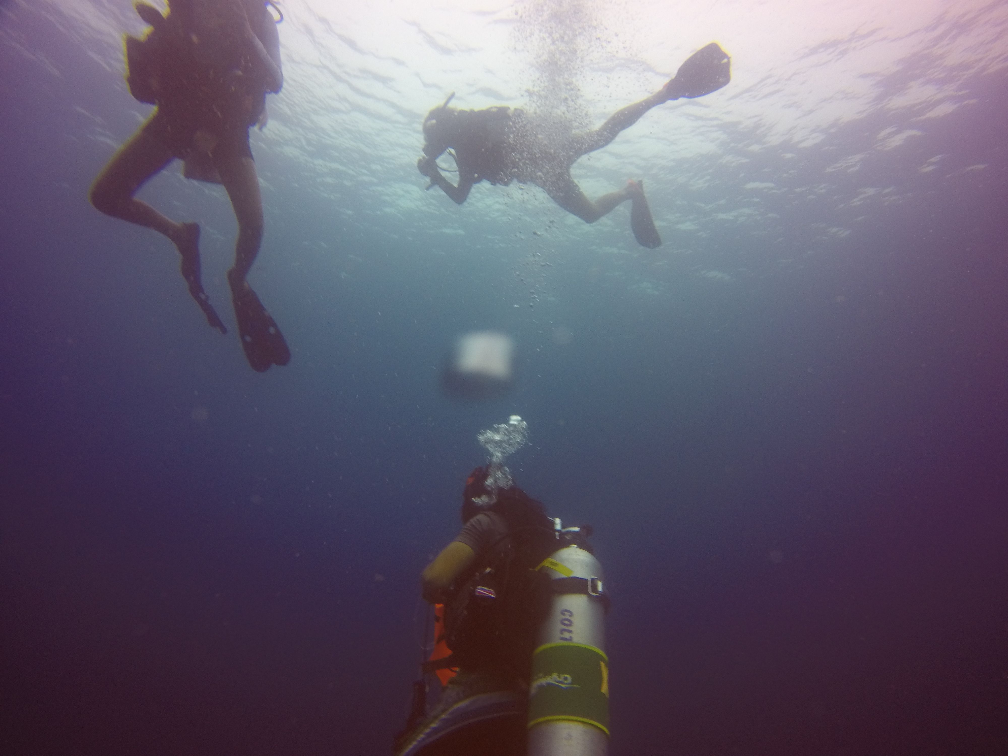 Home (With images) Scuba diving thailand, Diving course