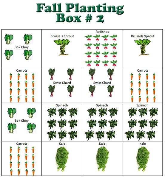 Fall Planting Box 2 Fall Plants Fall Garden Vegetables Square Foot Gardening Layout