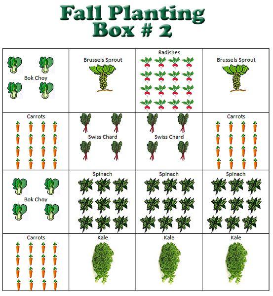 Vegetable Box Garden Planner