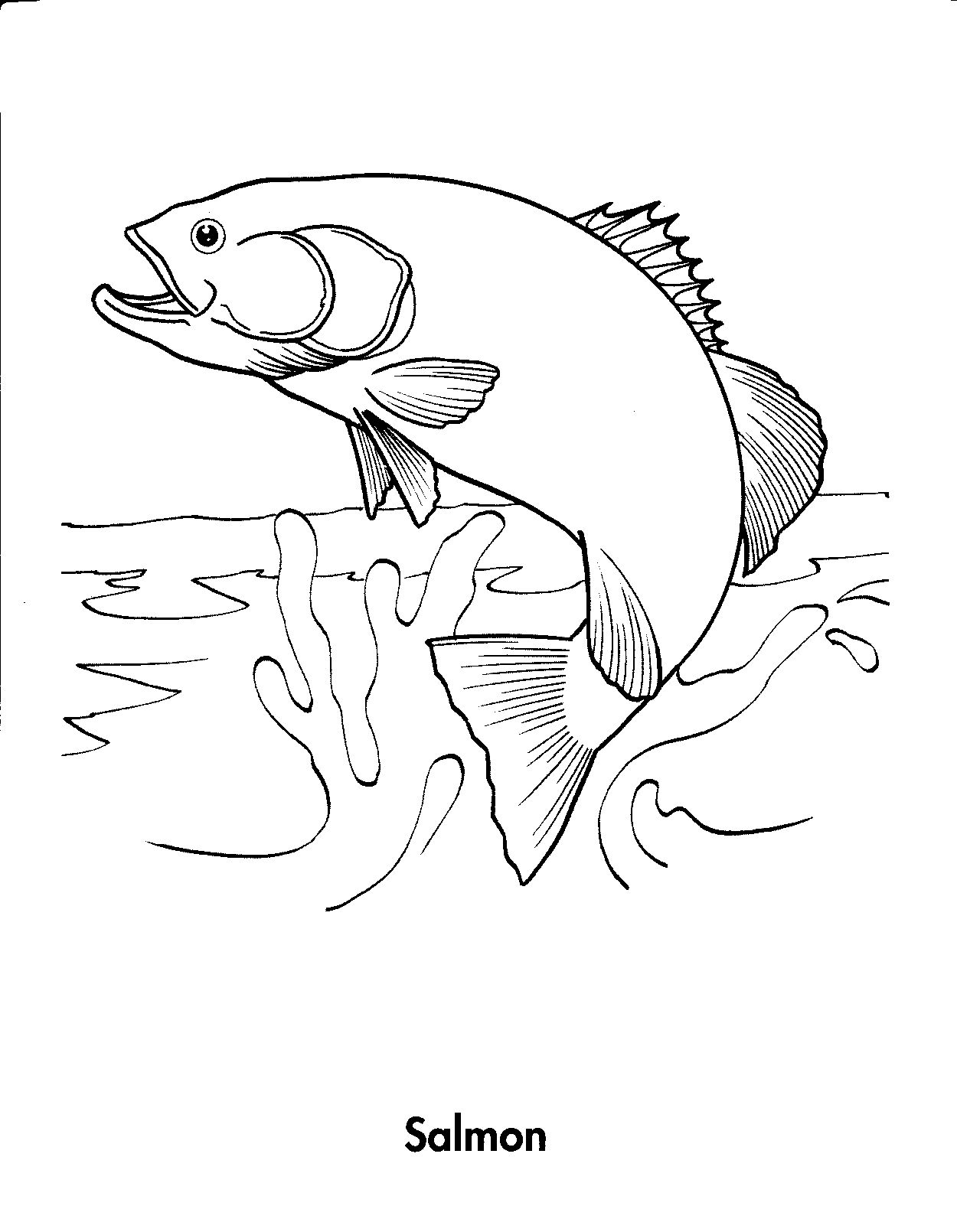 Coloring Pages For Kids All Kinds Of Images Just For Kids Fish