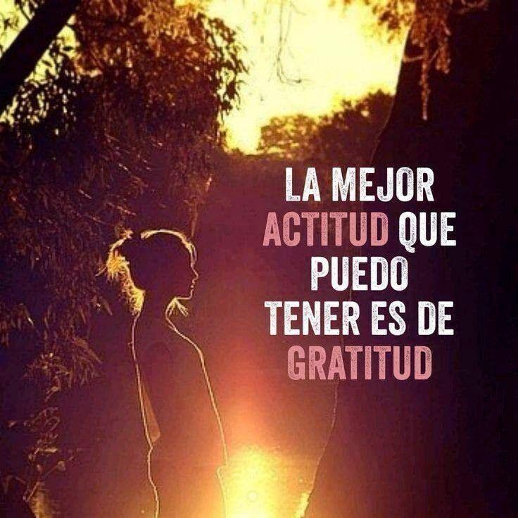Image Result For Gratitud Frases Imagenes De Agradecimiento Ser Agradecido Frases Gratitud