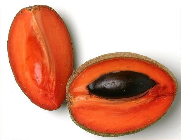 Pin En Frutas Originarias De Mexico