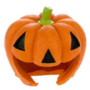 Top Fin Pet Halloween Pumpkin Cave Aquarium Ornament Ornaments Petsmart Halloween Animals Pumpkin Fish Dog Gifts