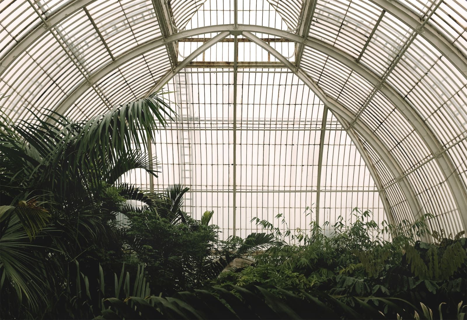 1cae8a552f667c9301fc1cf70a889d20 - Kew Gardens Greenhouse Iron And Glass
