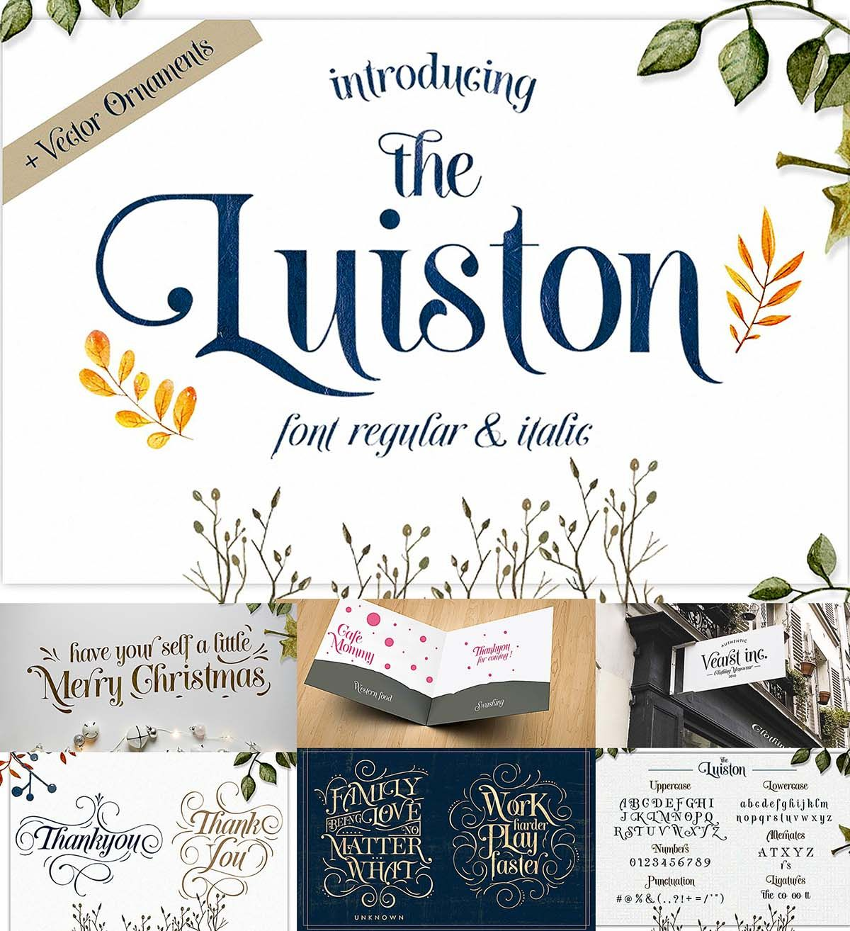 The Luiston font family | Free Fonts and Scripts | Fonts, Modern
