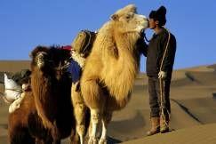China_Mongolian camel whisperer_Bardain Jaran desert