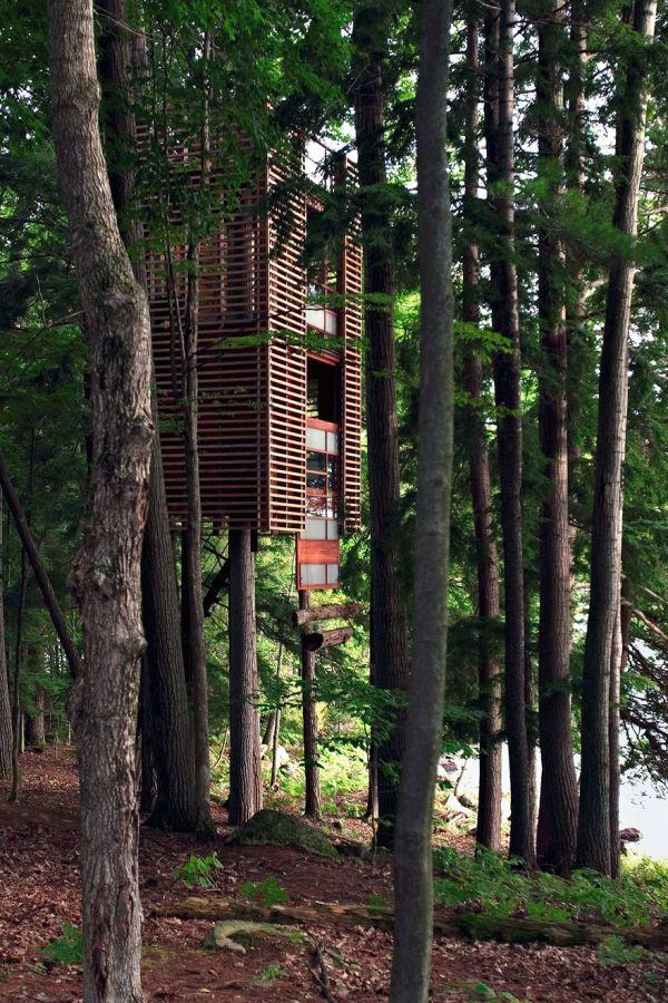Te animarías a vivir así? 17 casas construidas entre árboles Casa - casas en arboles