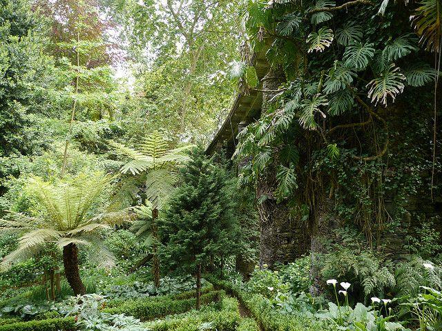 Funchal Jardin Municipal De Monte Famous Gardens Garden Landscaping Landscape