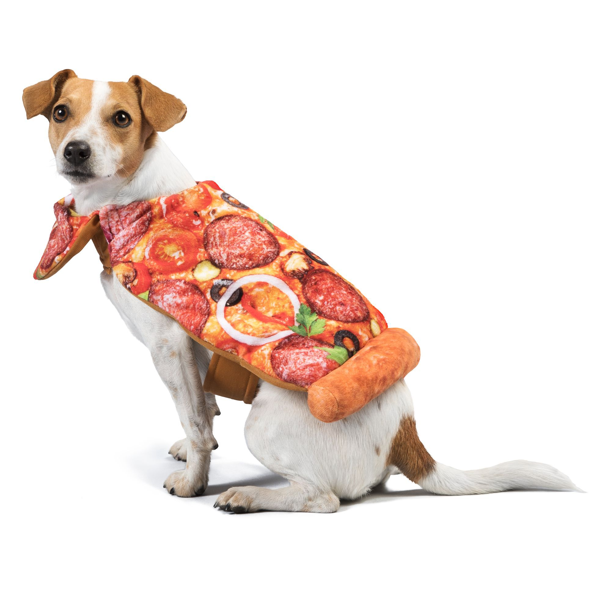 Thrills And Chills Halloween Pizza Pet Costume Size Medium