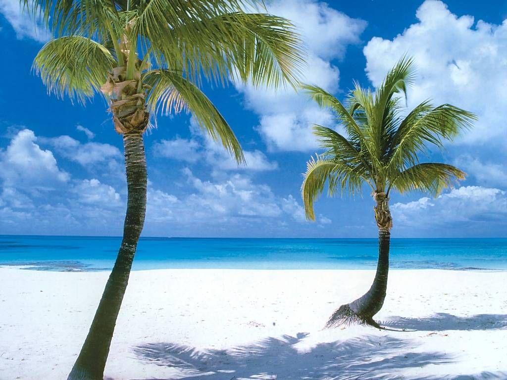 Fondo de Pantalla de Naturaleza Coco Point Beach  Barbuda
