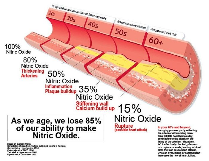 what foods have nitric oxide in them
