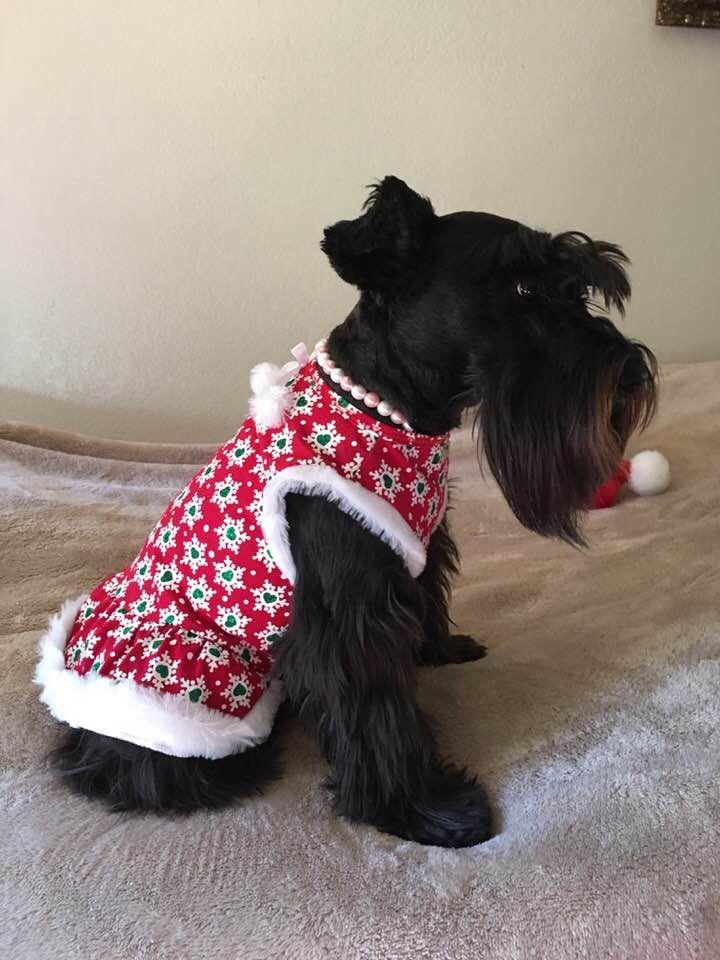 I Love My New Dress Schnauzer Puppy Scottie Dog Pet Dogs