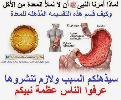 جسد محمد عندكم وتعاليمه عندنا لماذا أمرنا النبي صلى الله عليه وسلم أن لا نملأ المعدة من الأكل وكيف قسم هذه ألتق