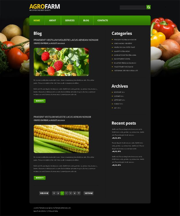 Free Website Templates. TemplateMonster Autumn 2012 Collection ...