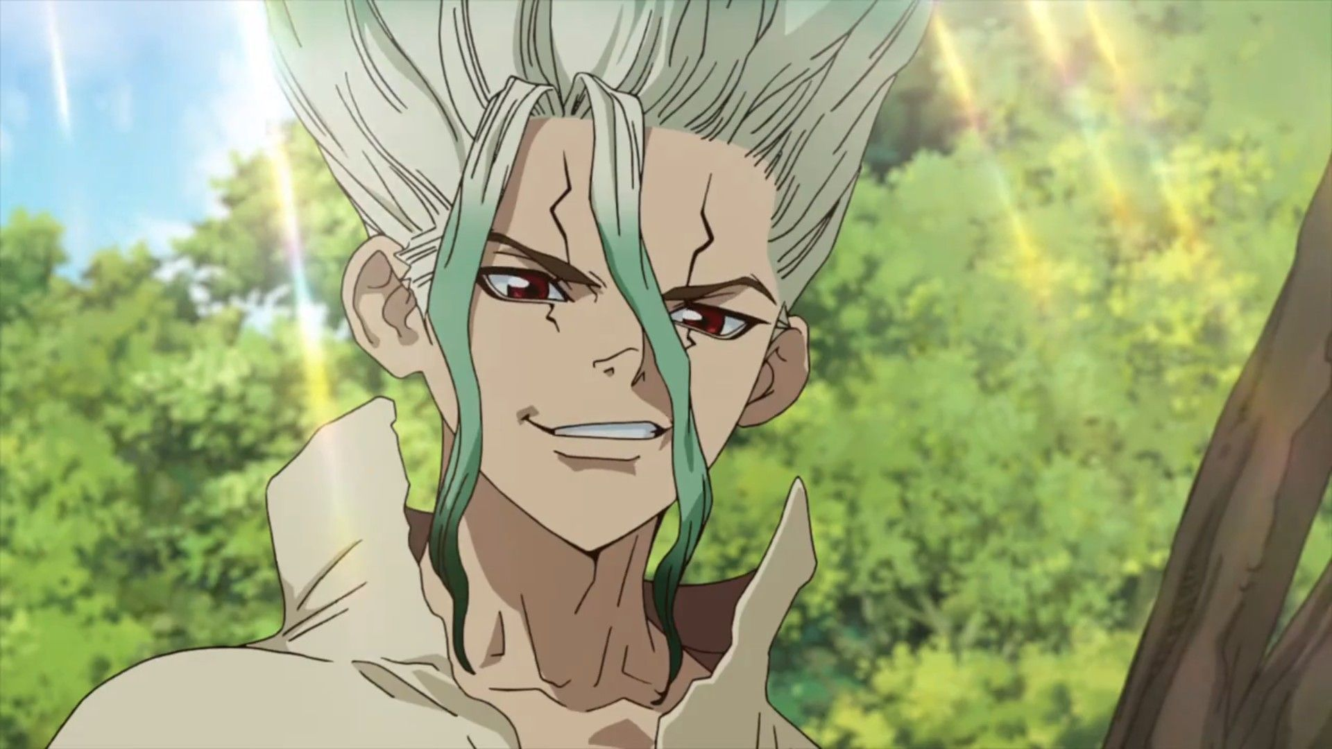 Pin by Nikkichan on Dr. Stone Anime, Anime release