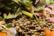 Lentil Salad with Cauliflower, Walnuts & Roasted Orange Vinaigrette