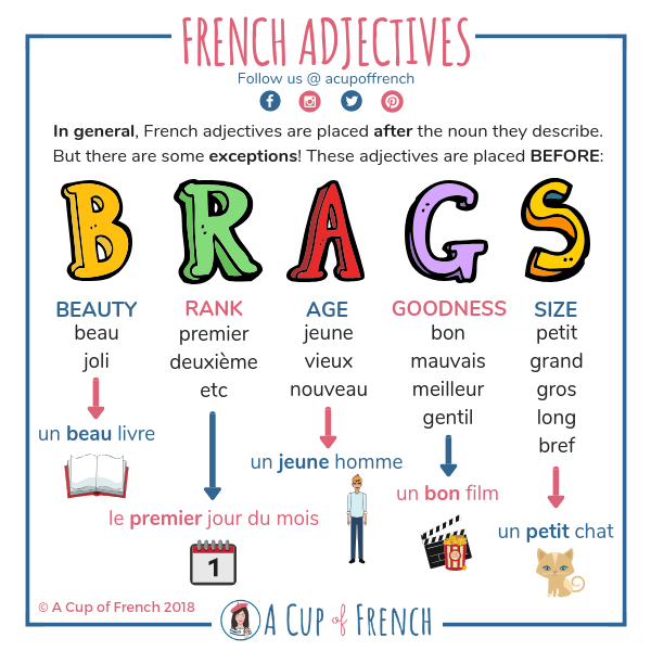 Adjective position 📍 | A Cup of French