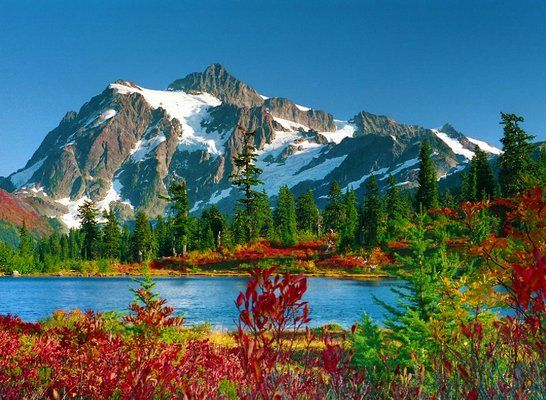 Revisit Picture Lake and capture the fall colors!