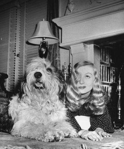 Veronica Lake and shaggy dog