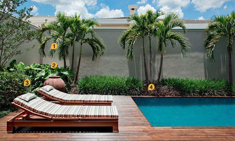 Neste quintal a piscina emoldurada por um paisagismo for Piscinas p 29 villalba
