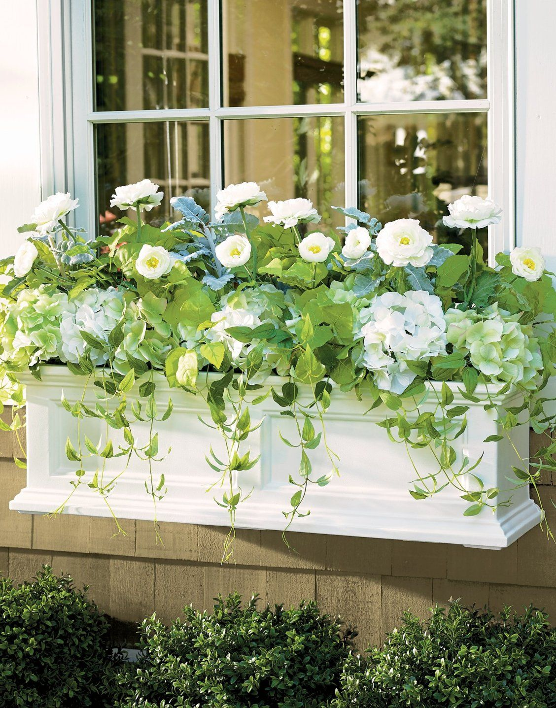 Devon selfwatering window box planter with images