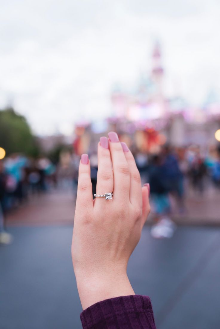 Nicole and Andrew\'s Proposal on HowHeAsked.com   Disney proposal ...
