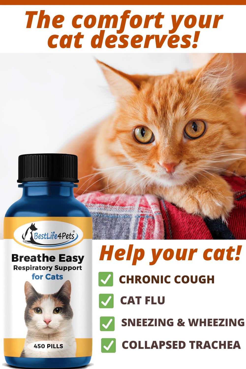 Cat Cough Remedy In 2020 Runny Nose Chronic Cough Cough