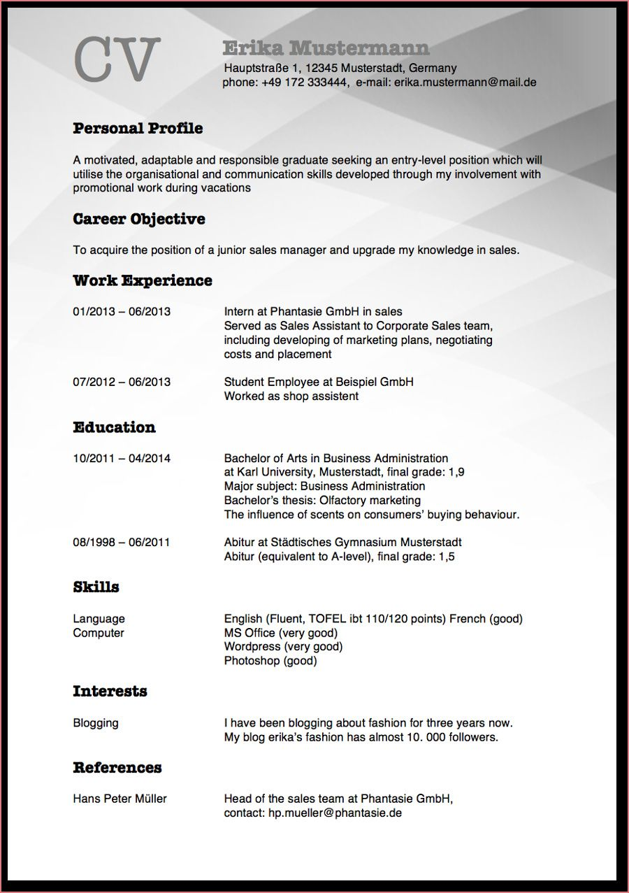amerikanischer lebenslauf englischerlebenslauf  call center representative resume summary senior network engineer pdf cv format for civil engineering students
