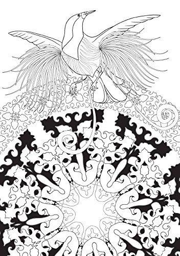 Aves do Paraíso - Livros na Amazon.com.br