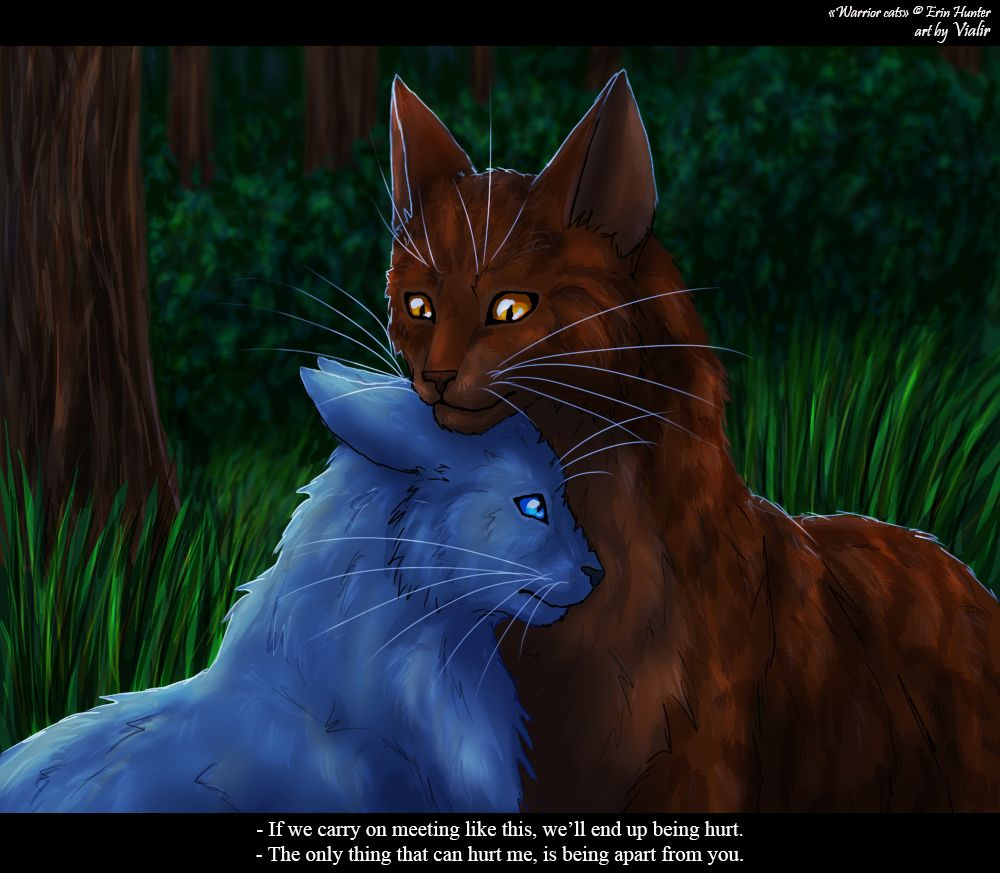 Warriors By Erin Hunter: Bluefur And Oakheart By Vialir.deviantart.com On
