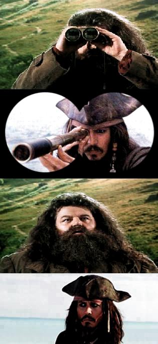 Pin By Louisianaaaaa On Memeszki Harry Potter Memes Harry Potter Jokes Harry Potter Fantastic Beasts