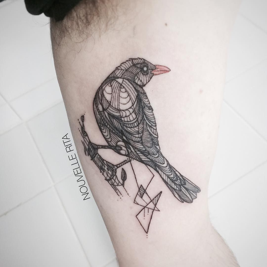 Not this exact tattoo but a blackbird at some point in memory of not this exact tattoo but a blackbird at some point in memory of my welsh buycottarizona