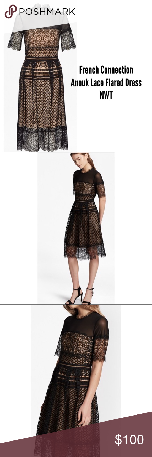 Lace below knee dress  French Connection Anouk Lace Dress NWT NWT