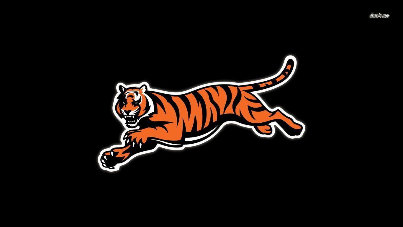 Cincinnati Bengals Sport HD Desktop Wallpaper American Football NFL