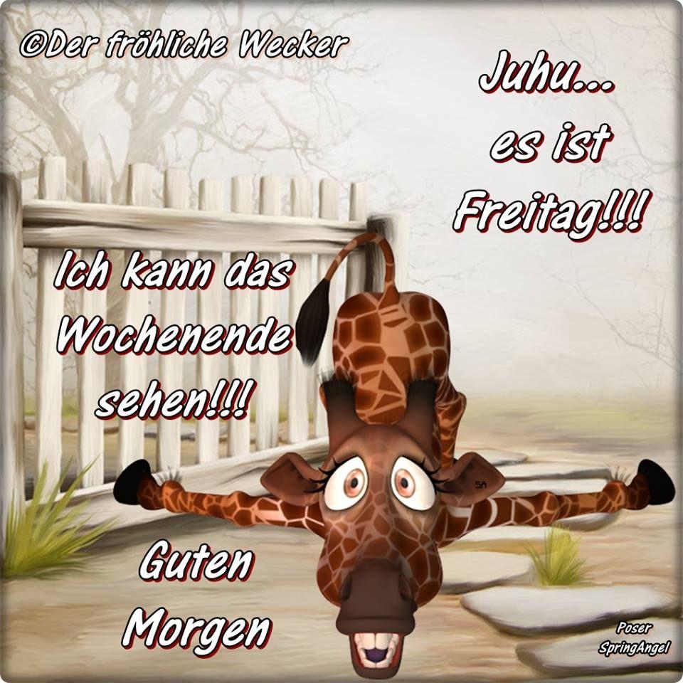 Juhu es ist Freitag!!! Ich kann das Wochenende sehen